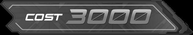 COST3000